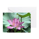 Lotus flowers Greeting Cards (20 Pack)