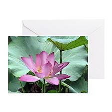 Lotus Greeting Cards (Pk of 20)