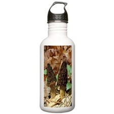 Black Morels Water Bottle