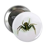 Scary Spider Button