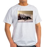 PEMBROKE WELSH CORGIS Ash Grey T-Shirt