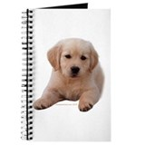 Golden Retriever Puppy Lying Down Journal