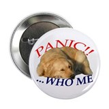 Golden Retriever PANIC!! ...WHO ME Button