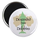 Descended from Dolphins Magnet
