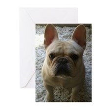 Unique French bulldog dog Greeting Cards (Pk of 20)