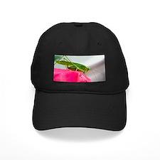 Helaine's Grasshopper Baseball Hat