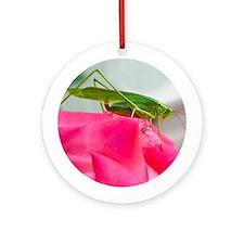 Helaine's Grasshopper Ornament (Round)