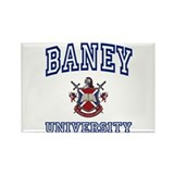 BANEY University Rectangle Magnet (10 pack)