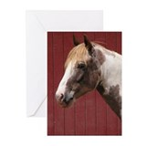 Paint Pony Greeting Cards (Pk of 20)