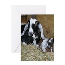 Ewe and Kid Greeting Card