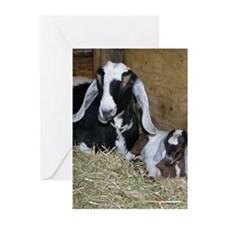 Ewe and Kid Greeting Cards (Pk of 20)
