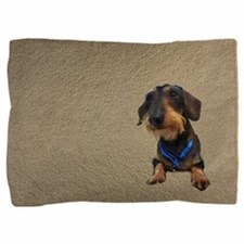 Unique Wirehaired dachshunds rescue Pillow Sham