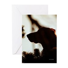Dog in Pine Silhouette Cards (Pk of 10)