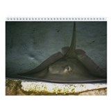 stingray Wall Calendar
