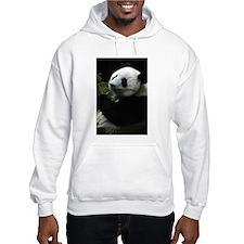 Panda (SD1) Jumper Hoodie