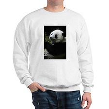 Panda (SD1) Sweater