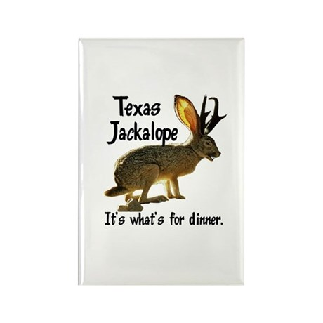 Texas Jackalope Rectangle Magnet (100 pack)