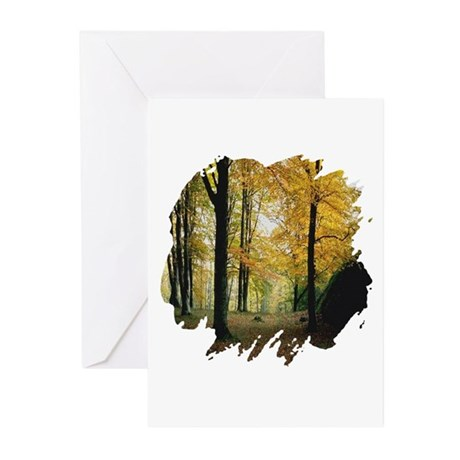 Autumn Woods Greeting Cards (Pk of 20)