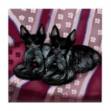 SCOTTISH TERRIER DOGS Tile Coaster