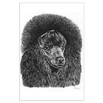 Black Poodle Large Poster