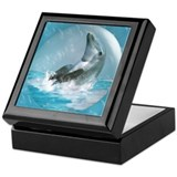 Bubble Dolphin Keepsake Box