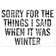 Sorry For The Things I Said When It Was Winter