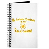 Ray Of Sunshine (Grandson) Journal