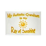 Ray Of Sunshine (Grandson) Rectangle Magnet