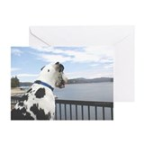 Lake Arrowhead Harlequin Great Dane Cards (10 Pk)