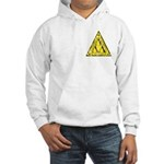 Worn Lambda Lambda Lambda Hooded Sweatshirt