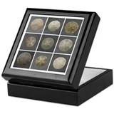 Gloucester Sand Dollar Keepsake Box