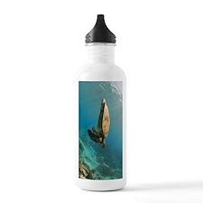 Hanging hawksbill Sports Water Bottle