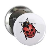"Lady Bug 2.25"" Button (100 pack)"
