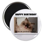 happy birthday naughty kitty look Magnet