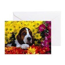 Puppy Basset Hound - Greeting Cards (Pk of 10)