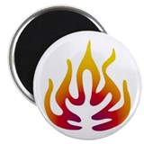 "Cool Neil 2.25"" Magnet (10 pack)"