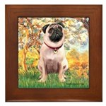 Spring / Pug Framed Tile