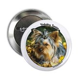 Cute Yorkshire Terrier Button
