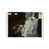"""Not Puppies Anymore"" Rectangle Magnet (10 pack)"