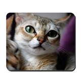 Singapura Lovers Mousepad