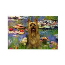 Lilies & Silky Terrier Rectangle Magnet