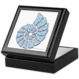 Light Blue Nautilus Shell Keepsake Box