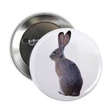 Blacktailed Jackrabbit 2.25&quot; Button (100 pack)