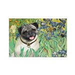 Irises / Pug Rectangle Magnet