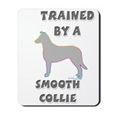 Smooth Collie Slvr Mousepad