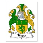 Triggs Family Crest Small Poster