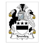 Townley Family Crest Small Poster