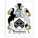 Thurlowe Family Crest Small Poster