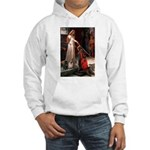 Accolade / 2 Pugs Hooded Sweatshirt