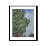 Magnolia Tree in City Park Framed Panel Print